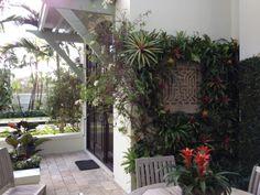 tropical vertical wall installation, landscape design by The Associates Studio, architecture by Clemens Bruns Schaub Architect & Associates, P.A.