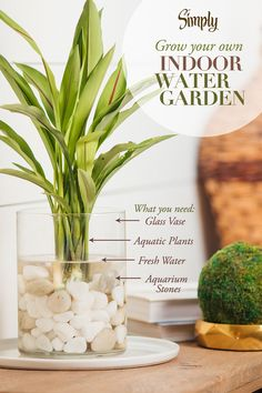 Light and Bright Home Office Reveal – Budget Decorating Tips for a Home Office Bring the beauty of the outdoors in by creating an indoor water garden. The soothing sounds of water can have a relaxing effect while the greenery can help freshen the air.