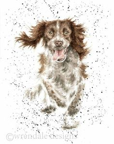 Like my Mally. Animal Paintings, Animal Drawings, Art Drawings, Watercolor Animals, Watercolor Paintings, Watercolour, Dog Portraits, Funny Art, Pictures To Paint