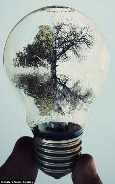 Made by: Adrian Limani , Light Bulb art