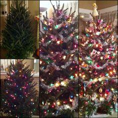 Progression of a Christmas tree #christmas #christmastree