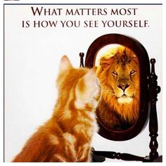 This is what I want my kids to realize.....confidence in who you are no matter what others think...