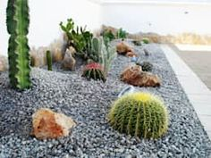 Mediterranean Garden by Au dehors Studio. This rock garden uses dark gray gravel and a few cactus pieces to liven it up.