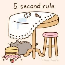 Hurry Pusheen!! Eat the cake in five seconds!