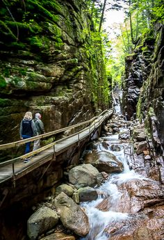 The Fabulous Flume Gorge Hike in Franconia Notch State Park, New Hampshire Yellowstone National Park, National Parks, Flume Gorge, Franconia Notch, East Coast Road Trip, Camping Places, Hiking Trails, Outdoor Travel, Travel Usa