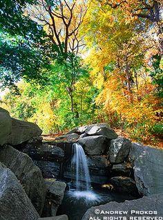 Central Park Waterfall in Autumn - http://andrewprokos.com/photos/new-york/