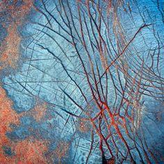 Rock Veins, Kj5759Ph • Christian Fletcher Photo Images