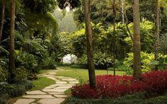 Jardim lindo, com caminho
