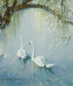 Vernon de Beauvoir Ward - Two Swans Under a Tree in Blossom