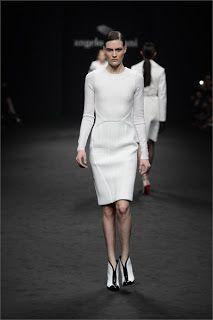 """ The Fashion Commentator "": ANGELO MARANI - FALL WINTER 2013/2014"