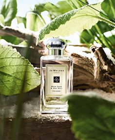 Jo Malone™ Wood Sage  Sea Salt Cologne- my absolute favorite scent luxury beauty products - http://amzn.to/2hu7dbB