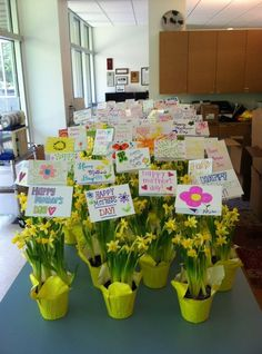 Wonderful Mother's Day flowers from our friends at National Charity League!