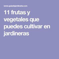 11 frutas y vegetales que puedes cultivar en jardineras