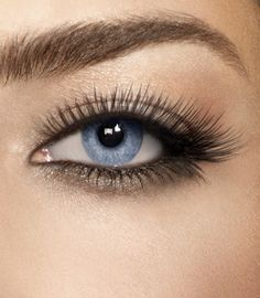how to get long lush lashes