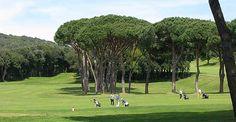 Golf Leisure Time: 3 ore di sano golf nel famosissimo campo da Golf di Punta Ala, il più grande d'Europa