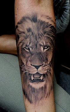 Lion tattoo...another idea for new sleeve.