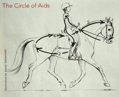 the circle of aids.