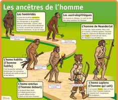 mon petit quotidien l homo sapiens Ap French, Learn French, History Memes, Art History, Flags Europe, Class Notes, History Teachers, Teaching French, Science For Kids