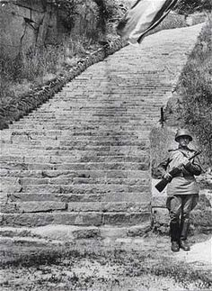 """Mauthausen.  Steps leading to the """"parachute jump"""" or cliff edge at the """"Wiener Graben"""" or rock quarry near Linz, Austria.  Inmates were forced to carry huge granite stones up the steps time after time, while SS guards laughed and joked and made bets as to who would first die.  Men were crushed beneath huge slabs of rock, or forced to jump from the cliff edge at the top.  SS men would shoot at those men climbing the stairs, struggling beneath the weight of inevitable death."""