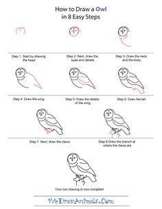 253 best how to draw owls images animal drawings learn drawing