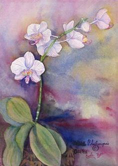 Carole Byers - Orchid