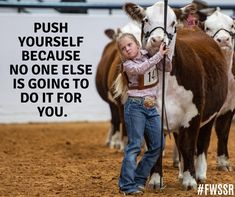 Push yourself because no one else is going to do it for you. Livestock QuotesYou can find Show. Fair Quotes, Cow Quotes, Horse Quotes, Animal Quotes, Smile Quotes, Wisdom Quotes, Barrel Racing Quotes, Show Cows, Country Girl Quotes