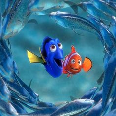 The Hardest Finding Nemo Quiz EVER!                          With Finding Dory out now on DVD & Blu-ray, you've probably rewatched Finding Nemo recently, or brushed up on facts about the film, or both just because it's so great.  But, do you think you're prepared to prove your memory is better than Dory's and take our extremely difficult quiz? Let's find out: