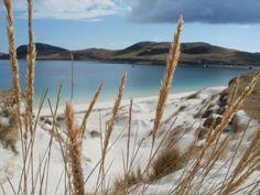 Snow on the beach Beaches, Scotland, Snow, Mountains, Nature, Travel, Naturaleza, Viajes, Sands