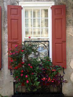Love the shutters too...Charleston window box