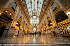 Good morning Milano #goodmorning#milano#galleria#galleriavittorioemanuele#vittorioemanuele#milanodavedere#igersmilano#ig_milano#milanocityufficiale#loves_milano#pointofview#picoftheday#photooftheday#milan#italy by simo.shoes
