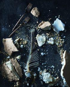 Patricia Barrett Studio — Bones and Salt, 2016 Pigment Ink, Limited Edition Prints, Watercolor Paper, Bones, Salt, Pure Products, Fine Art, Wall Art, Studio
