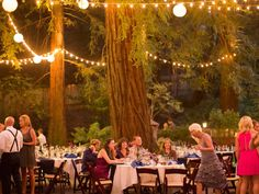 The Majestic And Magical Deer Park Villa Is A Regional Country Wide International Destination For Enchanting Redwood Forest Weddings Special Events
