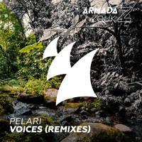 Pelari - Voices (Cuebrick Remix) [OUT NOW] by Armada Trice on SoundCloud