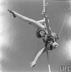 Circus Girls University Of Florida - Loomis Dean 1952 Old Circus, Circus Show, Circus Art, Vintage Circus, Dark Circus, Circus Pictures, Aerial Acrobatics, Aerial Dance, Art Du Cirque