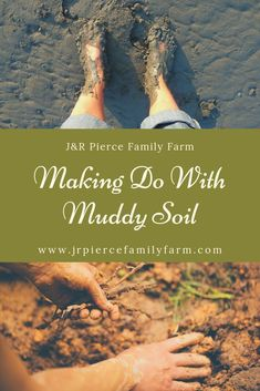 Mud isn't just annoying - it can be dangerous. Here are some tips on how to get rid of mud on your farm. Mud isn't just annoying - it can be dangerous. Here are some tips on how to get rid of mud on your farm. Container Gardening, Gardening Tips, Vegetable Gardening, Flower Gardening, Raised Garden Beds, Raised Bed, First Aid Tips, Farm Projects, Soil Improvement