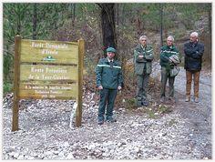 Saint André les Alpes : l'ONF rend hommage à son garde forestier