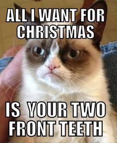 grumpy cat, all i want for christmas is your two front teeth