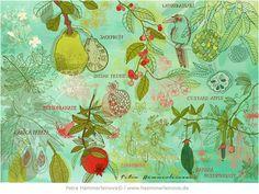 illustration & design | art by Petra Hämmerleinova