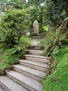 St Just in Roseland, Cornwall, England.we have a spot that needs these stairs. Garden Paths, Garden Bridge, St Just, Cornwall England, Arbors, Amazing Gardens, Gates, I Am Awesome, Sidewalk