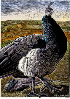 Peahen On Guard, Woodcut on Rives Heavyweight