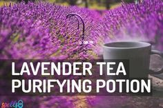 Witchy shortcut: Replace your daily meditation with a Tea-drinking ritual. Herbal tea spells can awaken your introspective powers & intuition. Use these recipes Candle Spells, Candle Magic, Magick Spells, Witchcraft Herbs, Wiccan Chants, Spelt Recipes, Lavender Tea, Lavender Kitchen, Love Spells