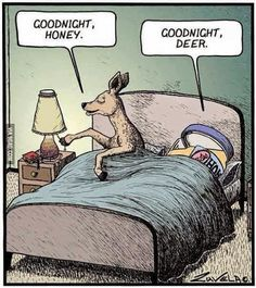"""Dobranoc Emotikon wink honey - miód, ale też zwrot """"kochanie"""" deer - jeleń, ale podobnie wymawia się jak dear - kochanie (zwrot do innej os.)"""