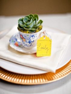 succulents | 23 Cacti And Succulent Ideas For Summer Wedding Décor