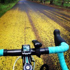 Street Art #bianchi impulso #bike #cycling