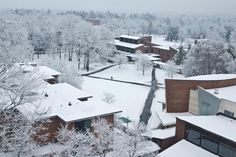 Skidmore College in Saratoga Springs NY, in the winter. Because, let's be honest. It snows a lot in New York!