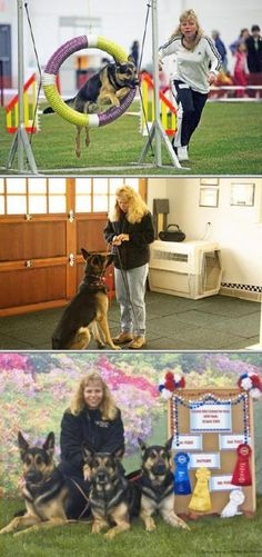 Hire this dog behaviorist who provides a variety of canine obedience training services with free consultation. This provider's quality obedience classes for dogs include agility and sport activities.