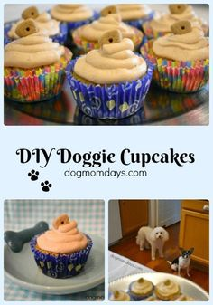 Homemade Dog Food A simple recipe for DIY doggie cupcakes! These homemade treats will be a hit with your dogs and their friends. Cupcakes For Dogs Recipe, Dog Cake Recipes, Dog Cupcakes, Dog Treat Recipes, Dog Food Recipes, Pupcake Recipe For Dogs, Cupcake Recipes, Dog Birthday Cupcakes, Puppy Treats