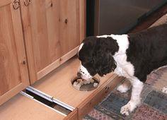 6 Kitchen Storage Trends To Copy - Pet-Friendly toe kick food drawer.