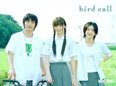 bird call 映画 鈴木えみ 田中圭 奥田恵梨華