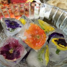 Easy way to put flower in Ice Cubes. Not sure that I'll use edible flowers. Will probably use fake flowers to keep the champagne bottles cold instead of regular ice.